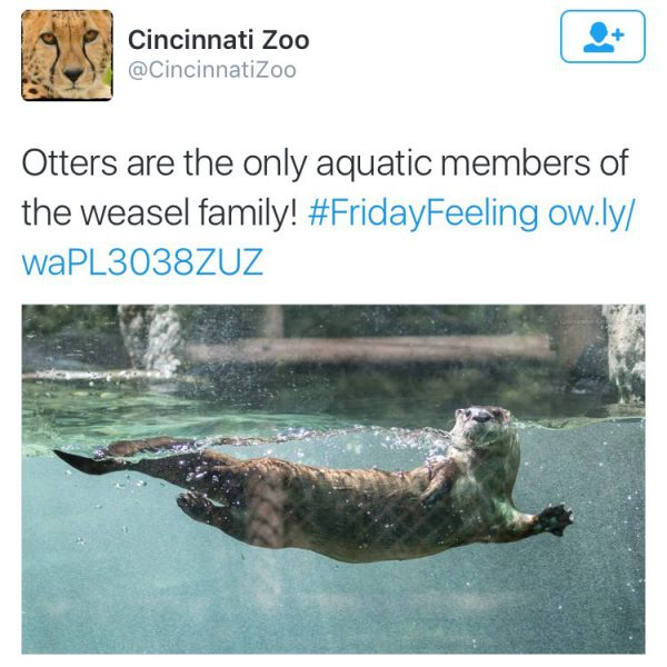 cincy zoo